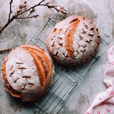 elegir buen pan
